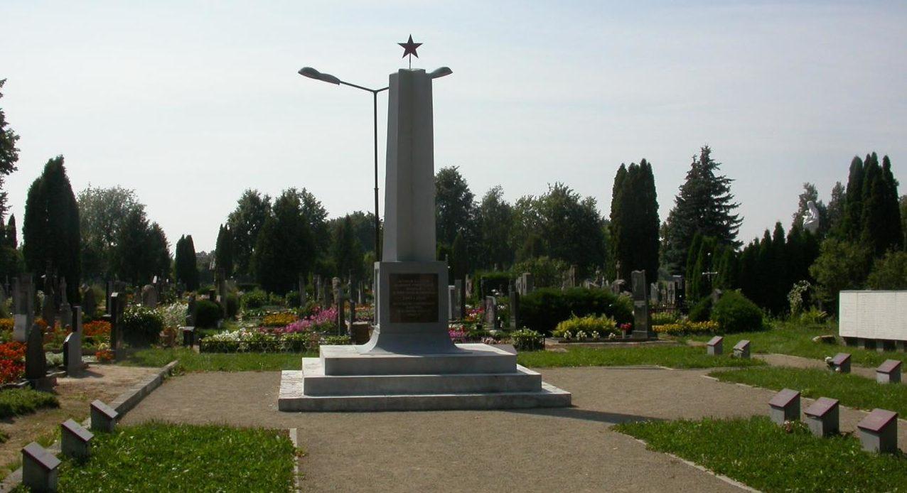 г. Пасвалис. Памятник на городском кладбище, установленный на братской могиле, которой похоронено 113 советских воинов, погибших в конце июля - начале августа 1944 года в окрестностях Салочяй, Пасвалиса и умерших от ран в военном госпитале. Среди похороненных 2 воина неизвестных.