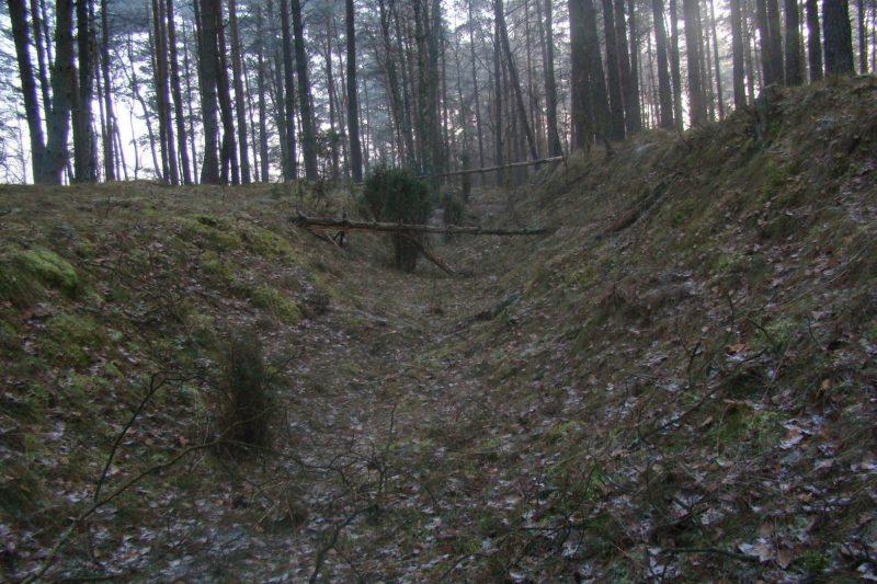 Остатки противотанковых рвов в лесах.