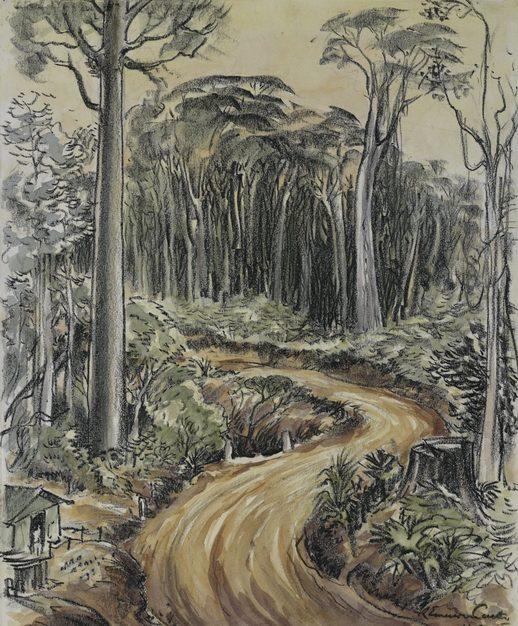 Emerson Curtis. Дорога в джунглях.