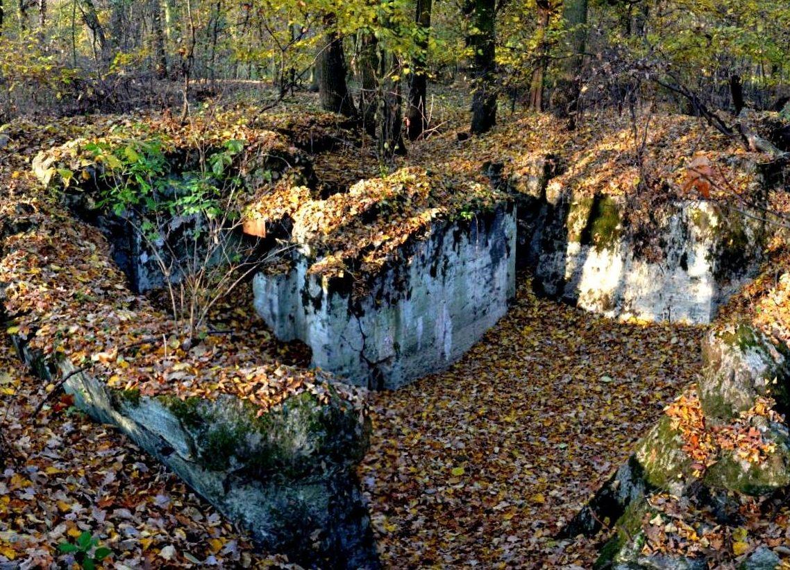 Остатки бункер №523.