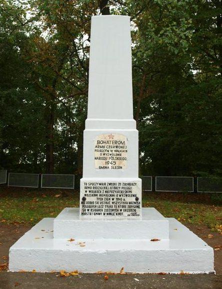 д. Шлесин, гмина Накло-над-Нотецен. Памятник, установленный на братской могиле, в которой похоронено 144 советских воинов, в т.ч. 124 неизвестных.