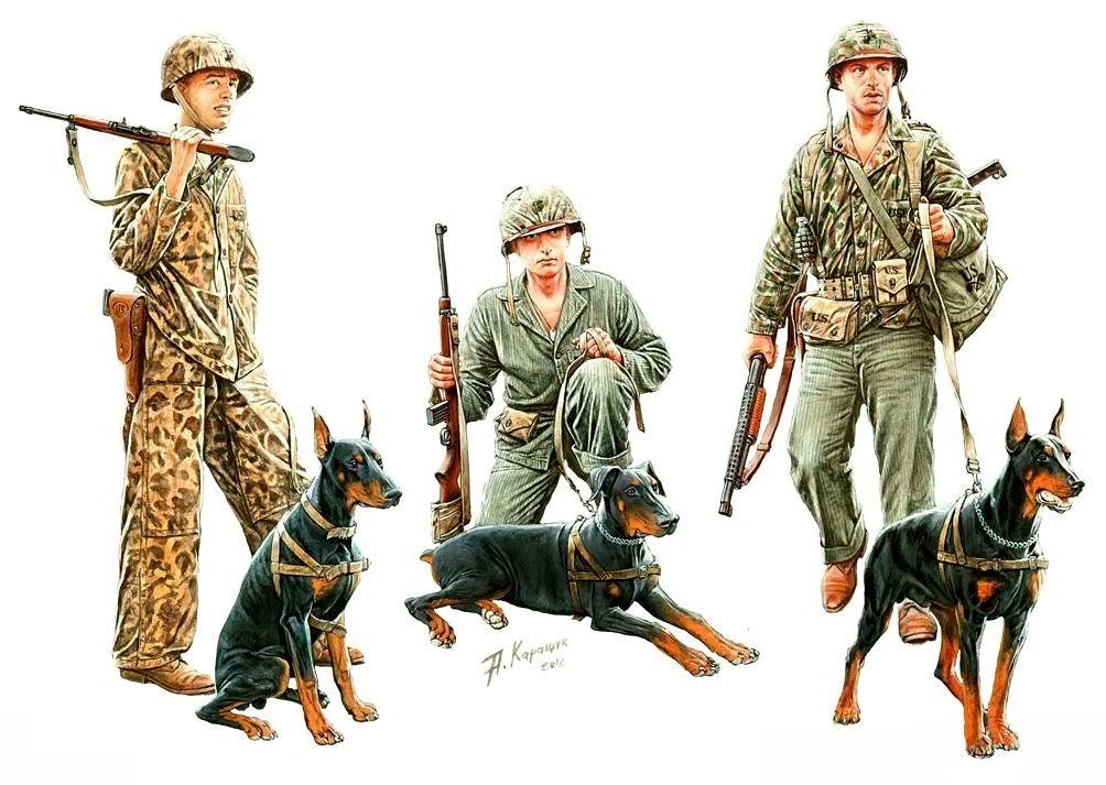 Каращук Андрей. Морская пехота США.