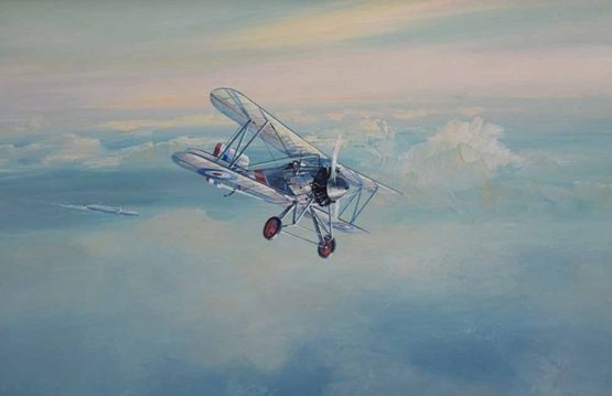 Ettridge Douglas. Истребитель Bristol Bulldog.