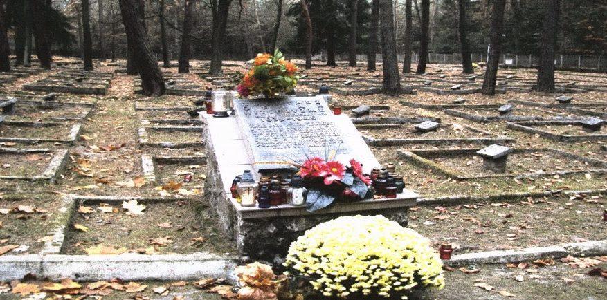 д. Ягелла, повят Пшеворск. Воинское кладбище, где похоронено 5 174 советских воинов, в т.ч. 5 146 неизвестных, погибших в годы войны.