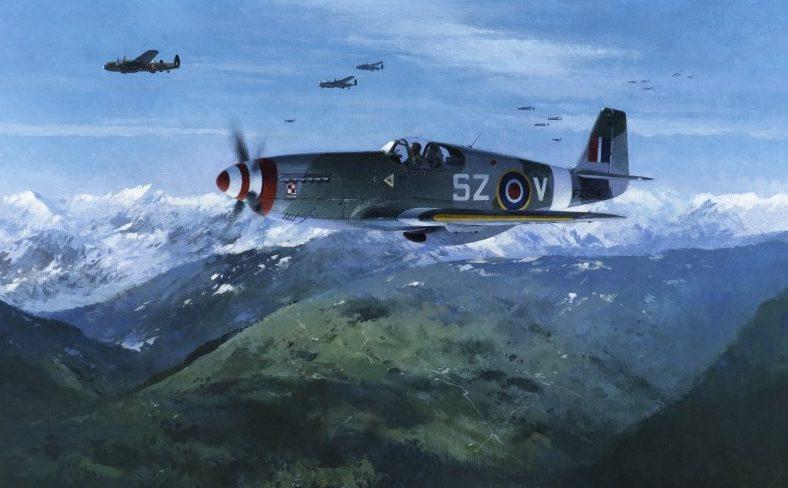 Middlebrook Roger. Истребители P-51D Mustang.