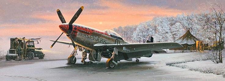 Brown Stephen. Истребители Р-51D.