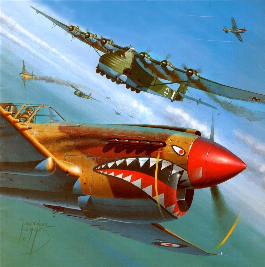 Wrobel Jaroslaw. Истребитель P-40 и планер Me-323 Gigant.