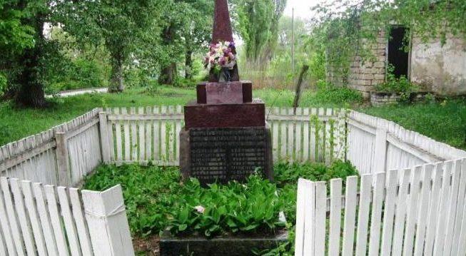 с. Новая Александровка Згуровского р-на. Памятник на братской могиле советских воинов.