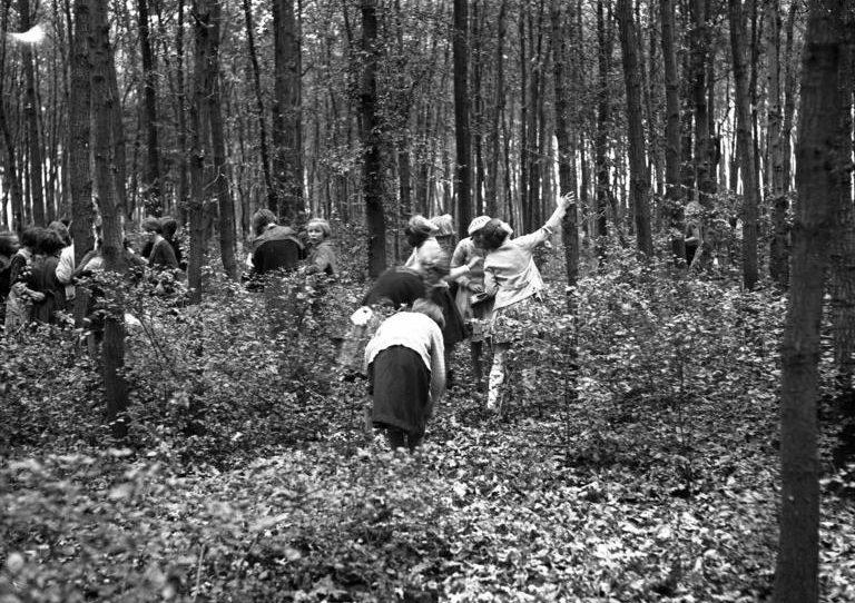 Экскурсия в лес для девочек.