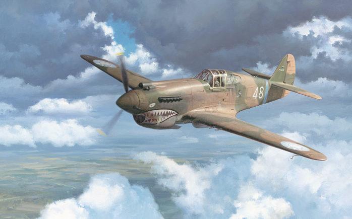 Grinell Roy. Истребитель Р-40.