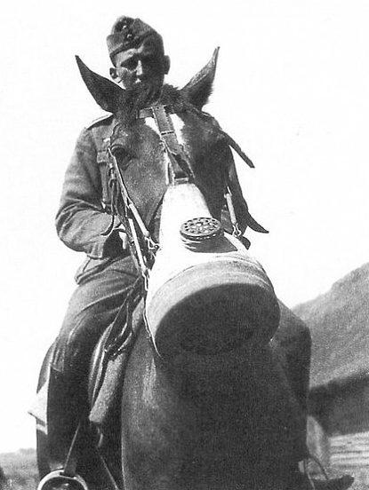 Солдат вермахта и лошадь в противогазе старого образца.