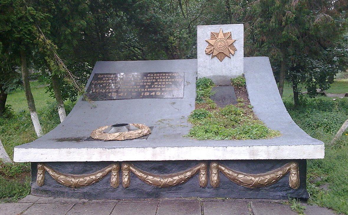 с. Новосёлки Киево-Святошинского р-на. Памятник воинам, погибшие в годы войны.