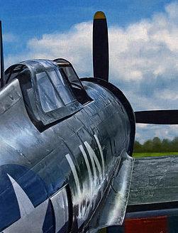 Jackson Dale. Истребитель Р-47.