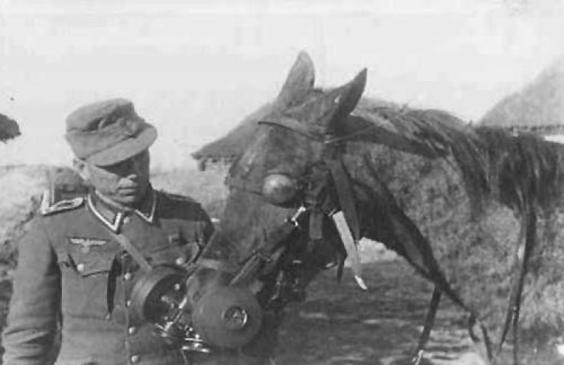 Немецкий конский противогаз образца 1941 г