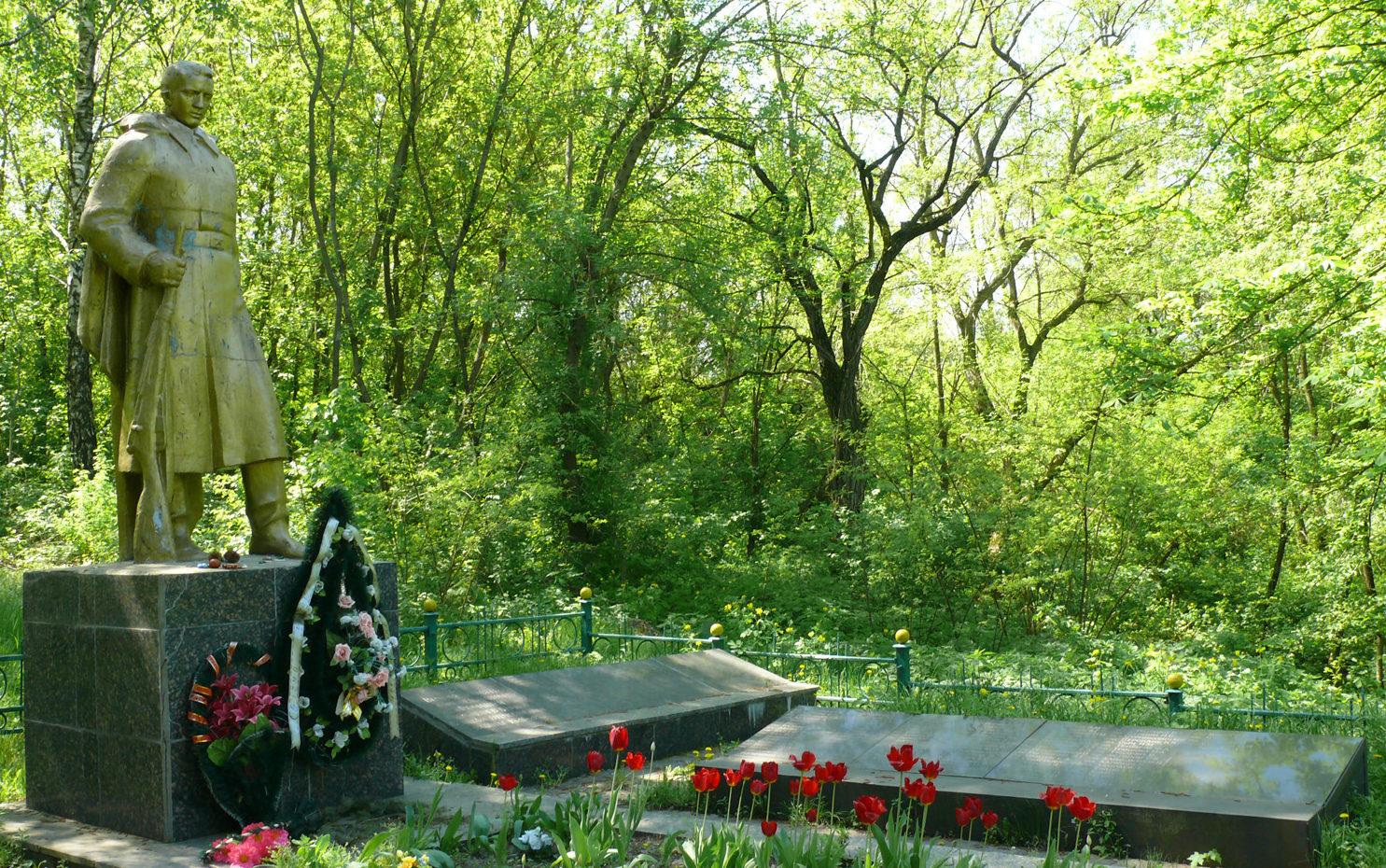 с. Ромашки Мироновского р-на. Памятник, установленный на братской могиле воинам, погибшим в 1943 году на Букринском плацдарме.