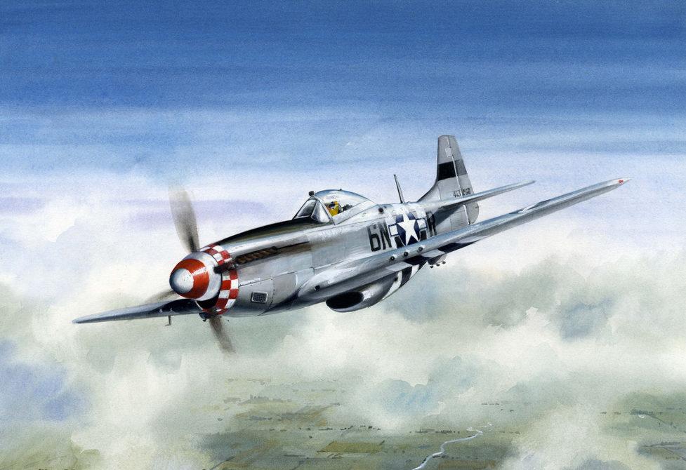 Robertshaw Bill. Истребитель P-51 Mustang.