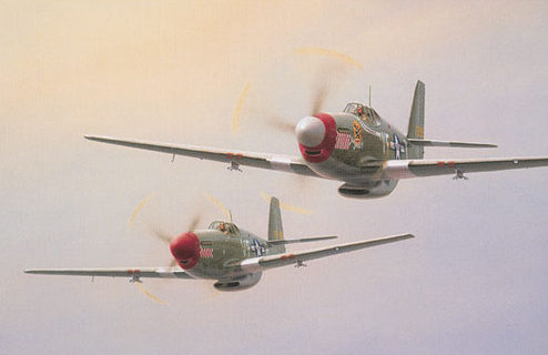 Denardo Domenic. Истребители Р-51 «Mustang».