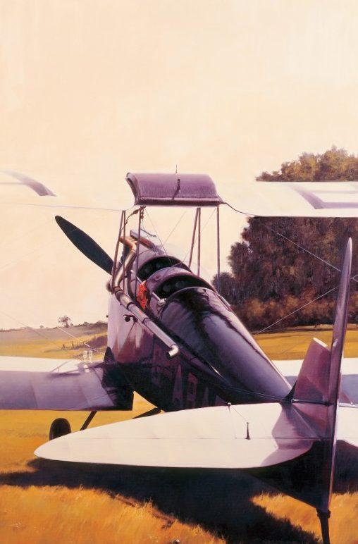 Thompson Charles. Учебно-тренировочный самолет D.H Gypsy Moth.