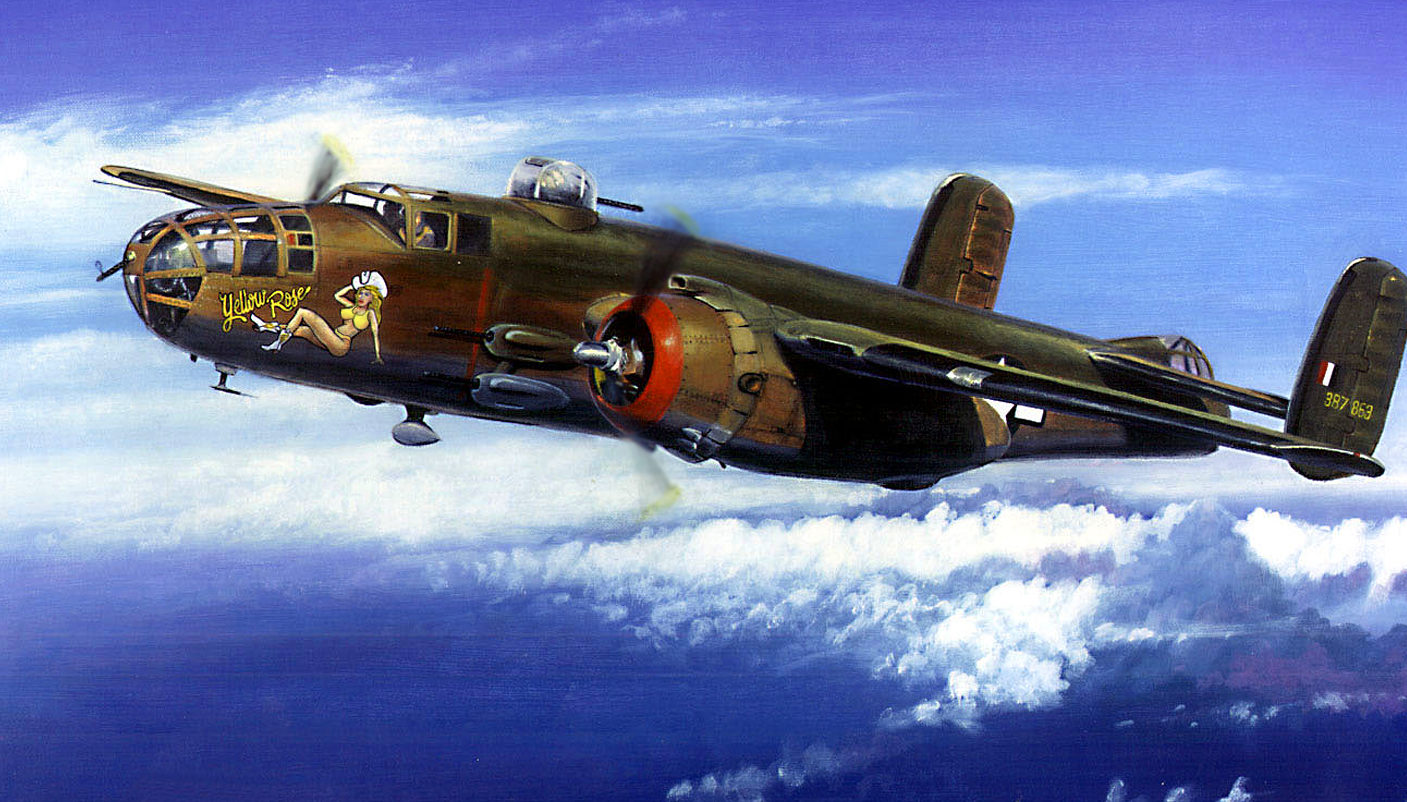 Doyle Steph. Бомбардировщик В-25 «Желтая Роза».