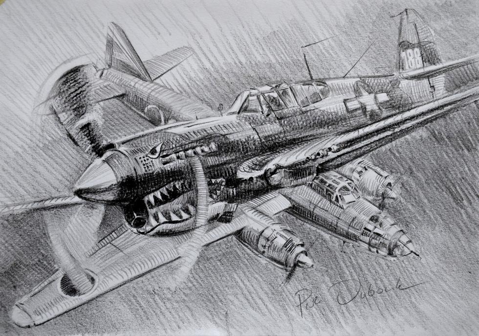 Dubowik Piotr. Воздушный бой.
