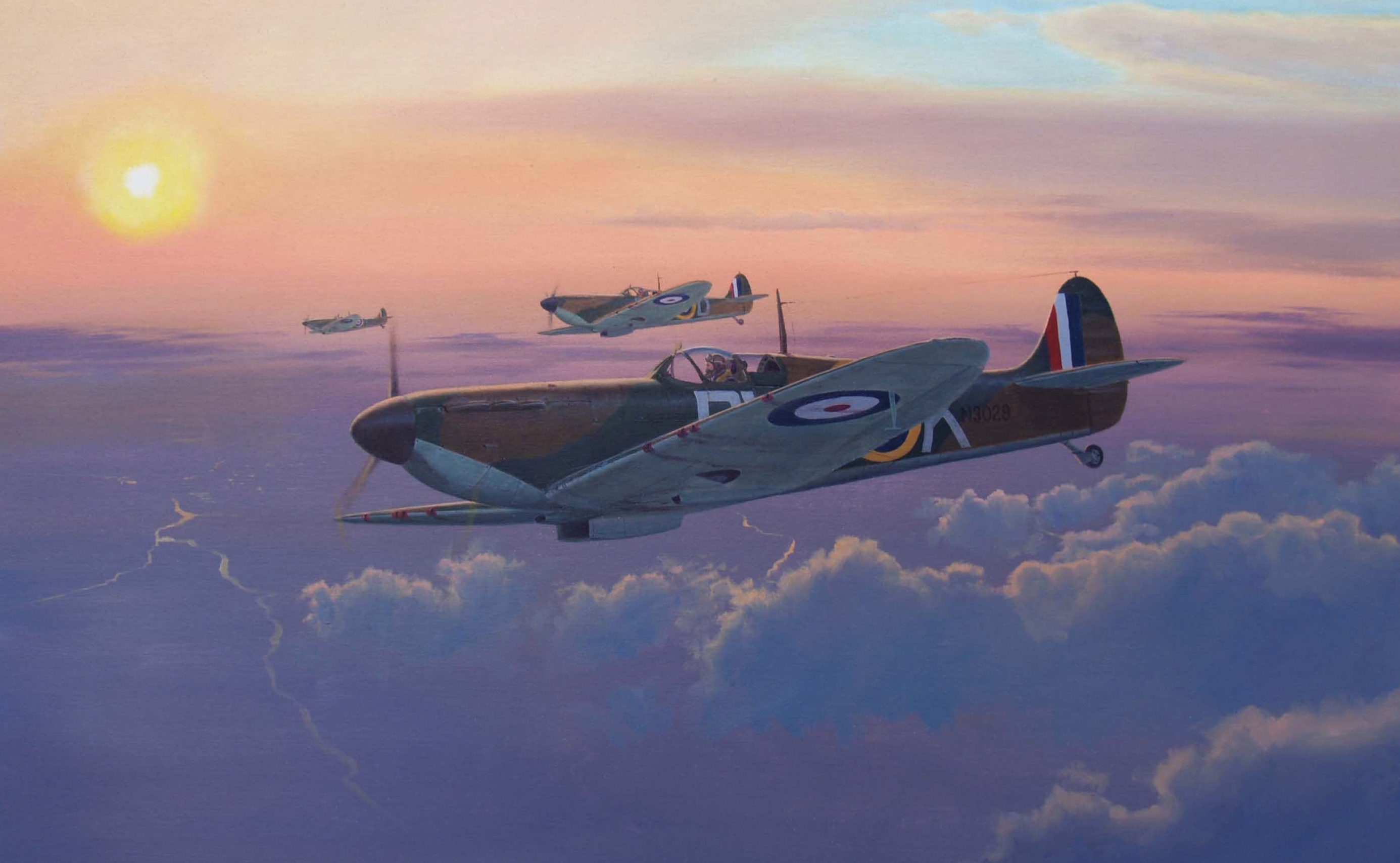 Heyen Steven. Истребители Spitfire Mk.1.