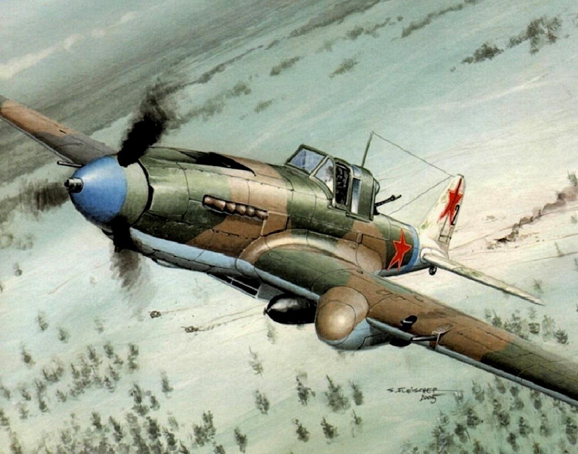 Fleischer Seweryn. Штурмовик Ил-2.