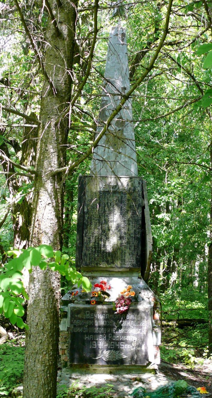 с. Варовичи, Чернобыльская зона отчуждения. Братская могила и памятник воинам-односельчанам.