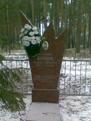 с. Плесецкое Васильковского р-на. Могила летчика В.В. Гревцова, погибшего в 1943 году.