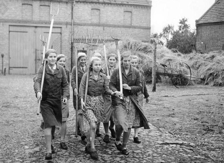 Девушки из BDM выходят на сенокос. 18.09.1939 г.