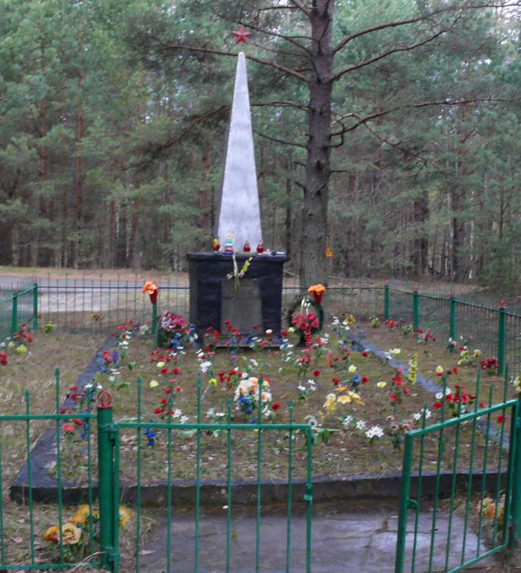 с. Новошепеличи Чернобыльская зона отчуждения. Обелиск на кладбище, установлен на братской могиле местных жителей, погибших от рук немецких оккупантов.