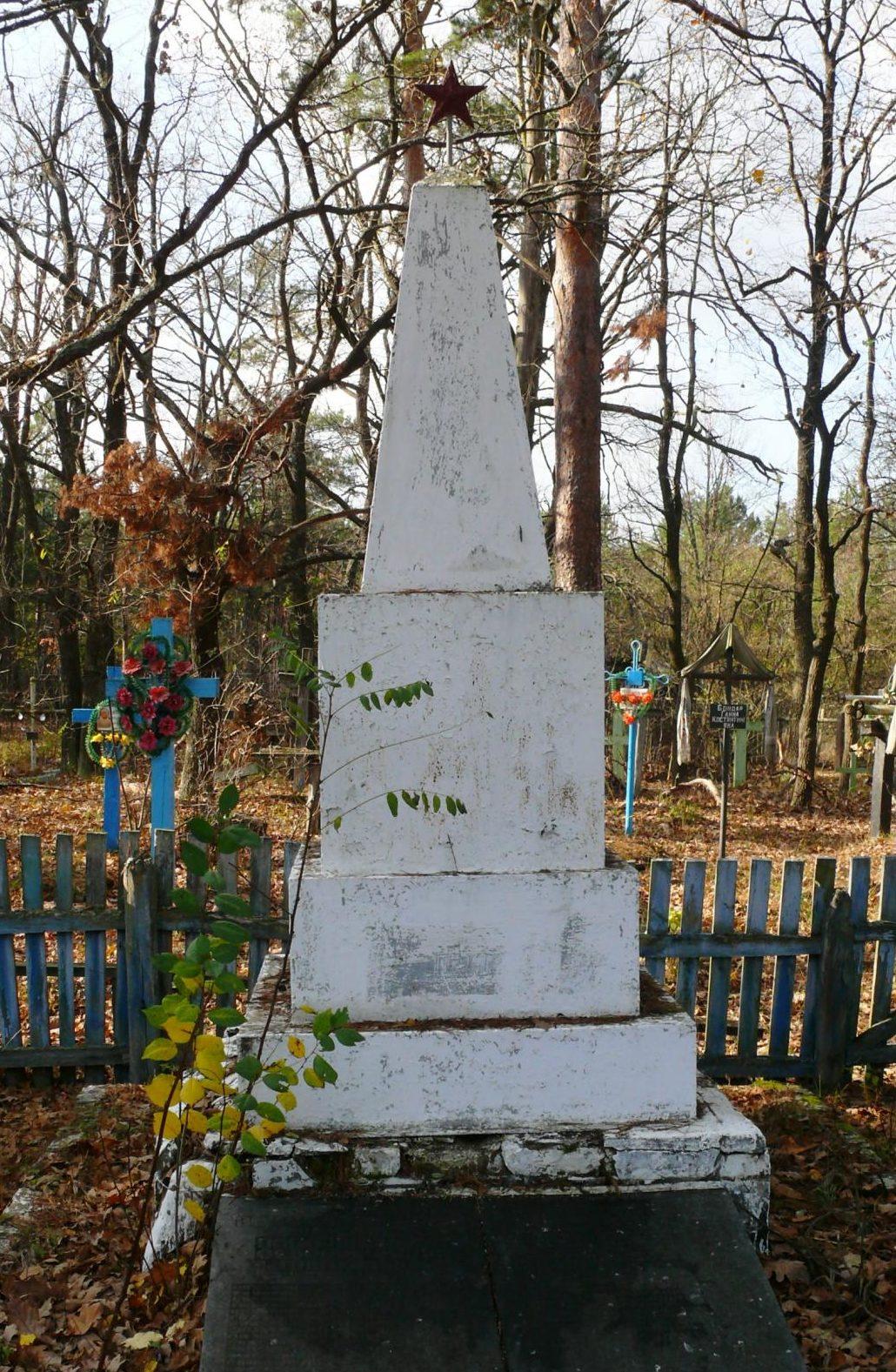 с. Плютовище, Чернобыльская зона отчуждения. Братская могила воинов 6 гвардейской стрелковой дивизии, погибших в октябре 1943 г. Всего захоронено 50 воинов.