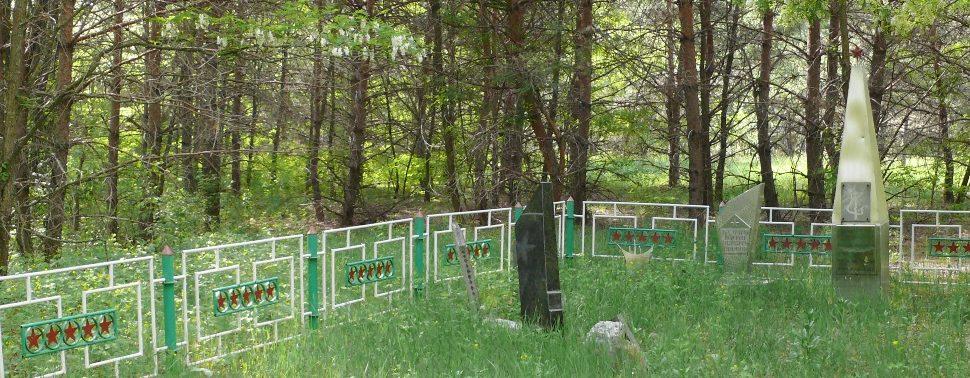 г. Припять Чернобыльская зона отчуждения. Партизанский мемориал.