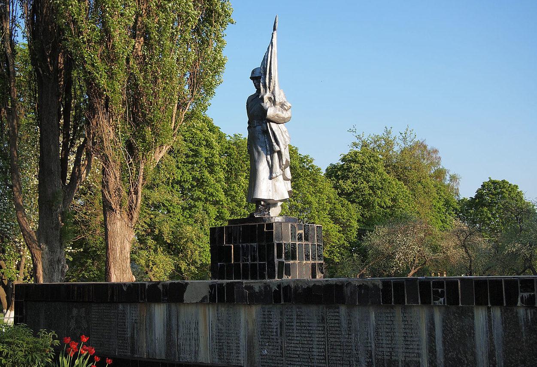 с. Бортиники Фастовского р-на. Памятник односельчанам, погибшим в годы войны.