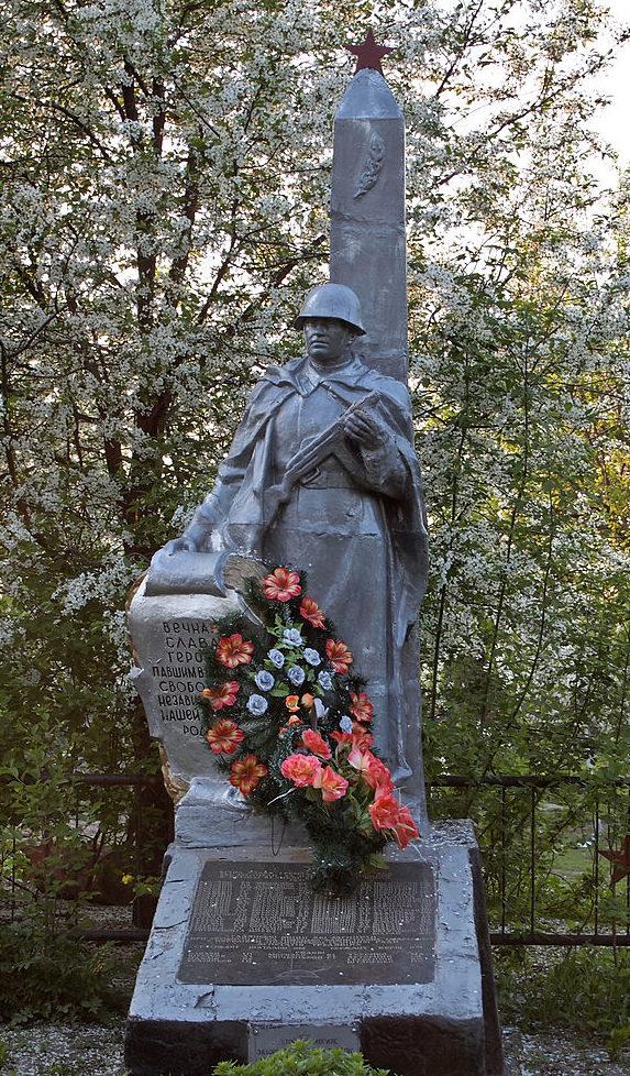 с. Королевка Фастовского р-на. Памятник, установленный на братской могиле воинов, погибших в годы войны.