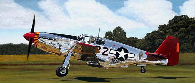 Lyons Sam. Истребитель Р-51 В.