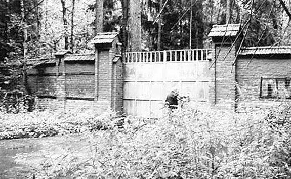 Ворота и забор дачи.