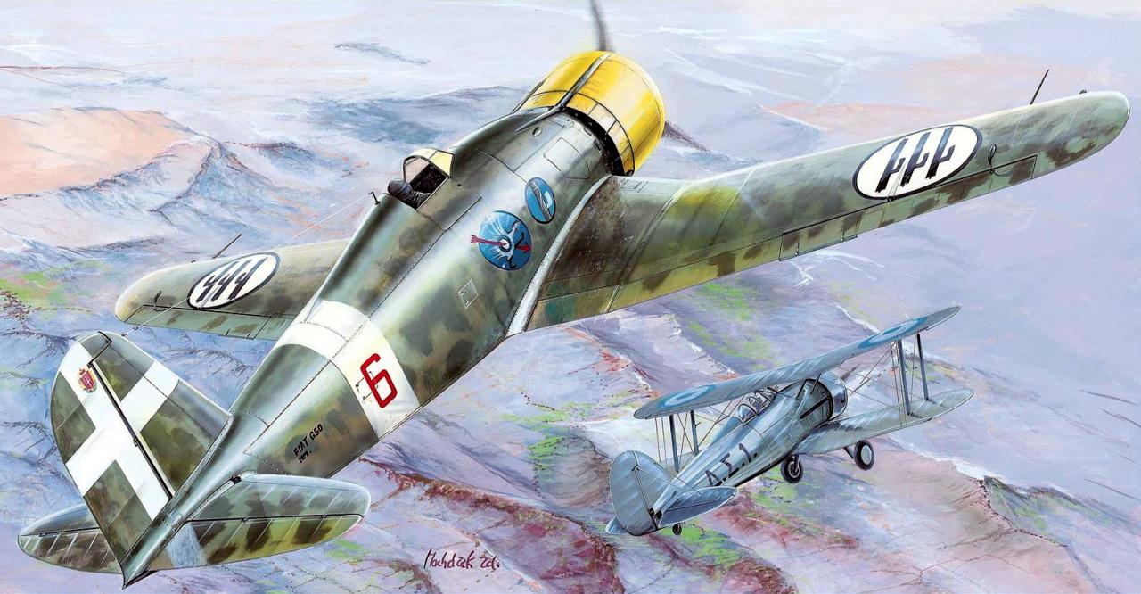 Machácek Zdenek. Истребитель Fiat G-50bis.