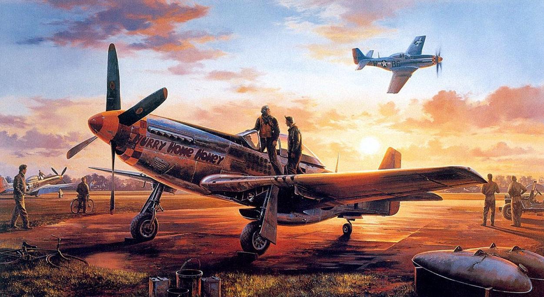 Satake Masao. Истребитель P-51D.