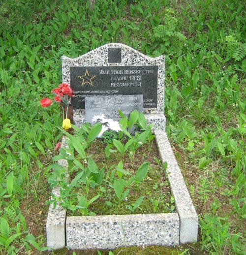 д. Перелоги Дрибинского р-на. Памятник установлен на братской могиле, в которой похоронено 3 советских воина, погибших в годы войны.