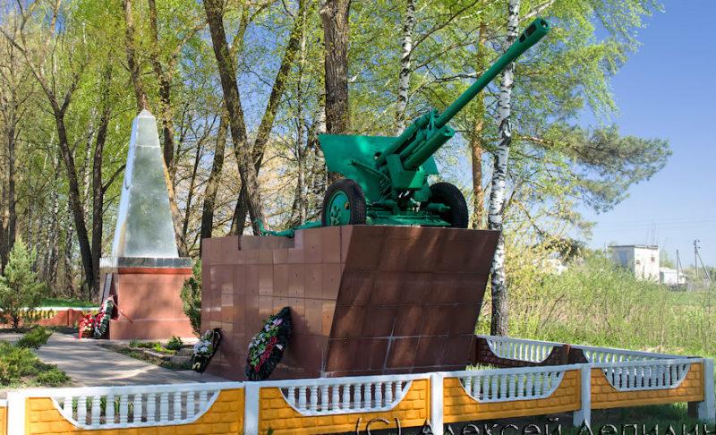 д. Сокольничи Кричевского р-на. Памятник Сиротинину Н.В.