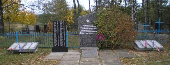 д. Высокое Чаусского р-на. Братская могила, в которой похоронено 708 воинов.