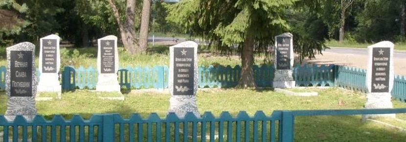 д. Великий Бор Осиповичского р-на. Памятники установлены в 1969 году на братских могилах, в которых похоронено 11 воинов, в т.ч. 10 неизвестных, погибших в годы войны.