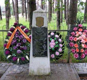 п. Елизово Осиповичского р-на. Памятник, установленный на братской могиле воинам, погибшим 4 октября 1941 г.