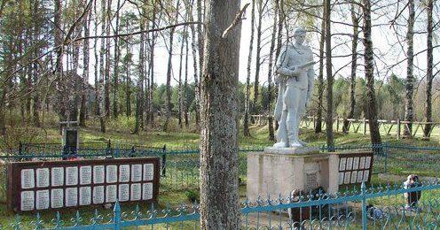 д. Долгий Мох Чаусского р-на. Братская могила на сельском кладбище, в которой похоронено 367 воинов.