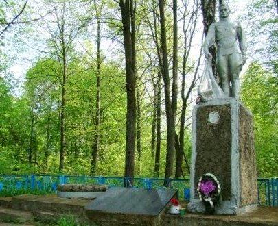д. Желивье Чаусского р-на. Братская могила, в которой похоронено 240 воинов.