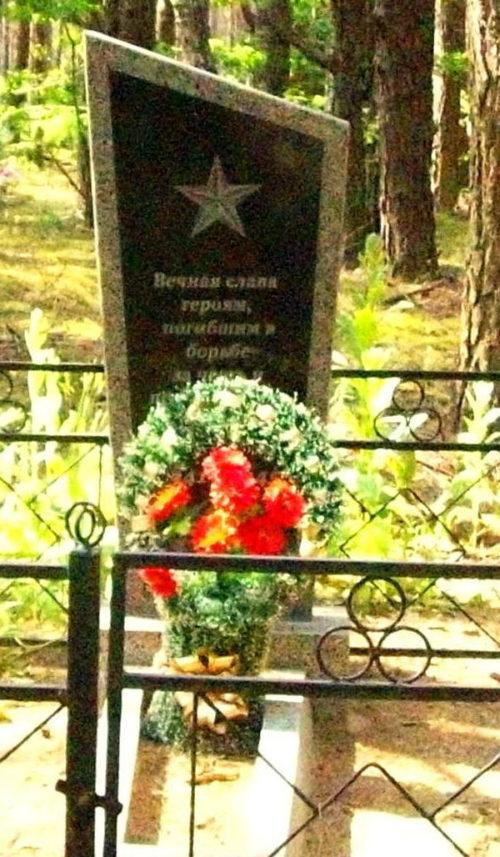 д. Крынка Осиповичского р-на. Памятник на кладбище был установлен в 1977 году на братской могиле, в которой похоронено 9 советских воинов, погибших в 1944 году.