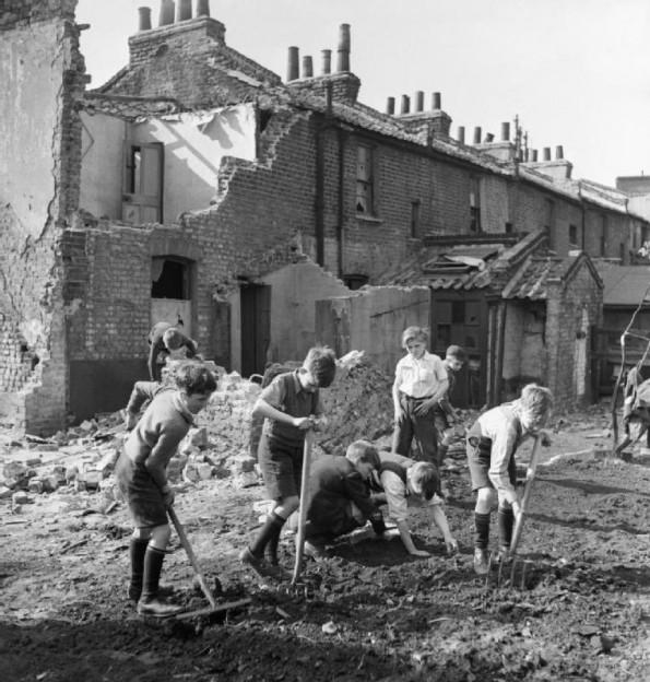 Британцы работают в «саду победы» на выращивании овощей. 1940 г.