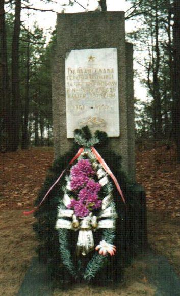 д. Моисеевичи Осиповичского р-на. Памятник на окраине деревни, установлен в 1975 году на братской могиле, в которой похоронено 6 советских воинов, в т.ч. 5 неизвестных, погибших в1944 году.