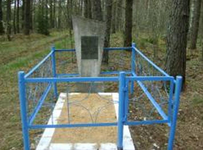 д. Граковка Краснопольского р-на. Памятник, установленный на братской могиле, в которой похоронено 5 советских воинов, в т.ч. 3 неизвестных, погибших в годы войны.