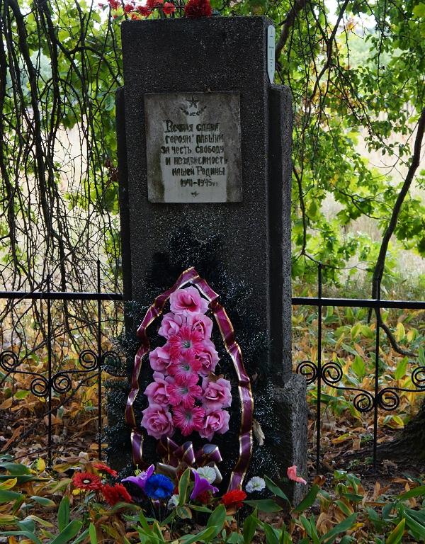 д. Богушовка Бобруйского р-на. Братская могила воинов, погибших в годы войны.